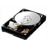 750GB Samsung SpinPoint F1 16MB 7200 U/min SATA