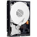 """500GB WD AV-GP Serie WD5000AVDS 32MB 3.5"""" (8.9cm) SATA 3Gb/s"""