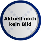 Buhl Data Service T@x 2011 Standard (PC)